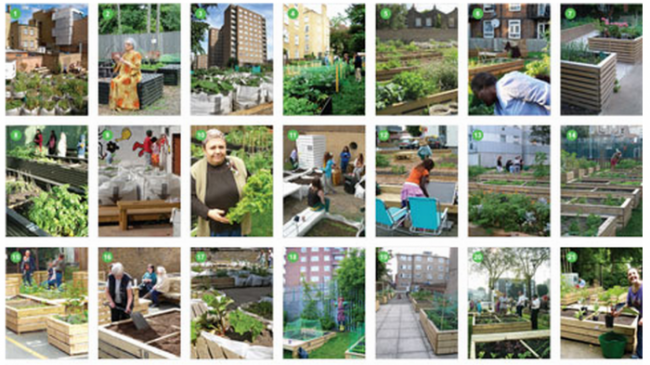 New South Hoxton allotments available with vacant lot